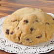 Gourmet chocolate chip cookie — Stock Photo