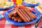 Picnic Hot Dogs — Stock Photo