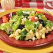 Stock Photo: Gourmet MediterraneSalad