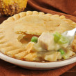 Turkey pot pie — Stock Photo #31513573
