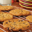 Chocolate chip cookies on a cooling rack — Stock Photo