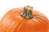 Pumpkin closeup — Stock Photo
