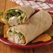 Stock Photo: Chicken Salad Wrap