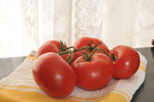 Vine ripened tomatoes — Stock Photo