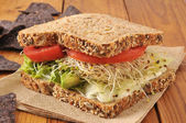 Healthy veggie sandwich — Stock Photo
