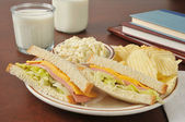 Baloney sandwich and coleslaw — Stock Photo