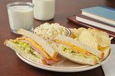 Baloney sandwich and coleslaw — Stock Photo