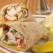 Chicken wrap sandwiches — Stockfoto #50502931