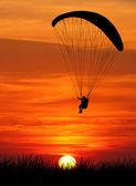 Paragliding at sunset — Foto Stock