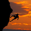 Stock Photo: Climbing at sunset