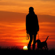 Royalty-Free Stock Photo: Girl with dog at sunset