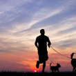 Man with dog - Foto Stock