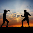 Stock Photo: Fencers at sunset