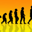 Human evolution - Stock Photo