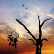 Dreamcatcher — Stock Photo #17359575