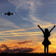 Airplane in the sky — Stock Photo #18339443