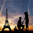 Paris at sunset — Stock Photo #18366785