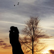 Kiss at sunset — Stock Photo #18385627