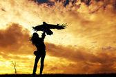 Falconer at sunset — Stock Photo