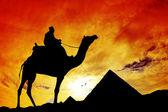 Mısır piramitleri — Stok fotoğraf