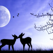Pair of deer - Stock Photo