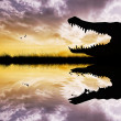 Alligator — Stock Photo