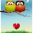 Owls in love — Stock Photo