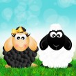 Stock Photo: Sheep couple