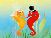 Seahorses in love — Stock Photo