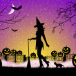 Witch on Halloween — Stock Photo
