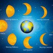 Moon phases — Stock Photo #25921353