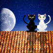 Cats in love on the roof — Stock Photo