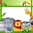 Safari animals cartoon — Stock Photo