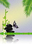 Bamboo and zen stones — Stock Photo