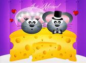 Mice in love — Stock Photo