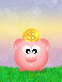 Pig piggy bank — Stock Photo