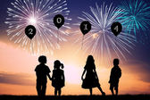 Firework for the New Year — Stock Photo