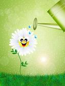 Regando las flores — Foto de Stock