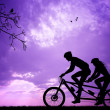 Couple in tandem — Stock Photo #28945557
