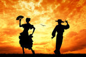 Flamenco at sunset — Stock Photo