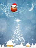 Owl with Christmas hat — Stock Photo