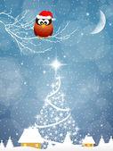 Uggla med jul hatt — Stockfoto