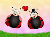 Ladybugs cartoon — 图库照片