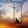 Cat on swing — Stock Photo
