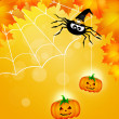 Spider of Halloween — Stock Photo