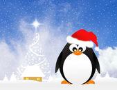 クリスマスにペンギン — ストック写真