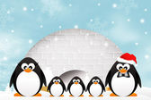 Penguins in the igloo — Stock Photo