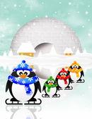 ペンギンの氷の上 — ストック写真