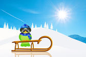 Bird on sled — Stock Photo