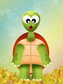 Turtle cartoon — Stock fotografie